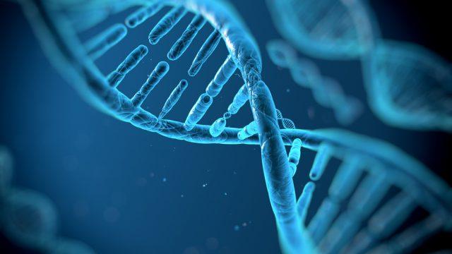 Poker Spa consulta il nostro DNA